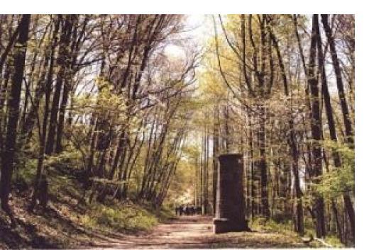 The trail in Croton